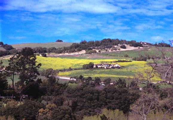Carmel River Valley